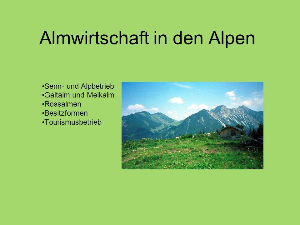 Almwirtschaft in den Alpen