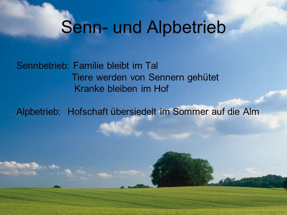 Senn- und Alpbetrieb Sennbetrieb: Familie bleibt im Tal