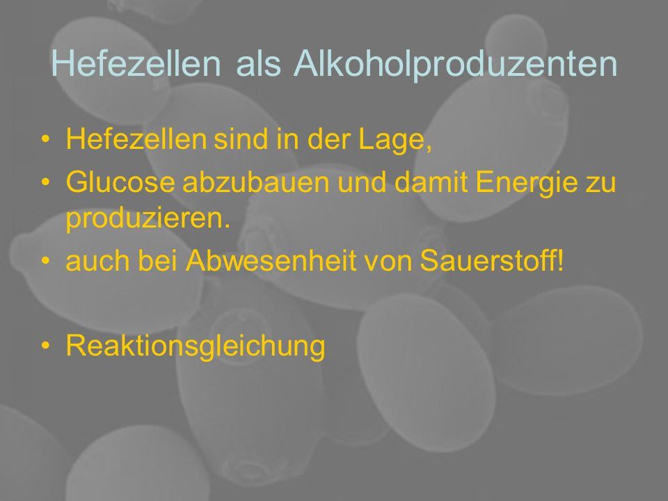 Hefezellen als Alkoholproduzenten