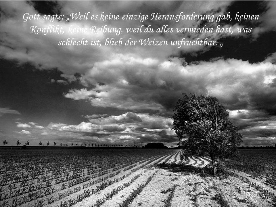 """Gott sagte: """"Weil es keine einzige Herausforderung gab, keinen Konflikt, keine Reibung, weil du alles vermieden hast, was schlecht ist, blieb der Weizen unfruchtbar."""
