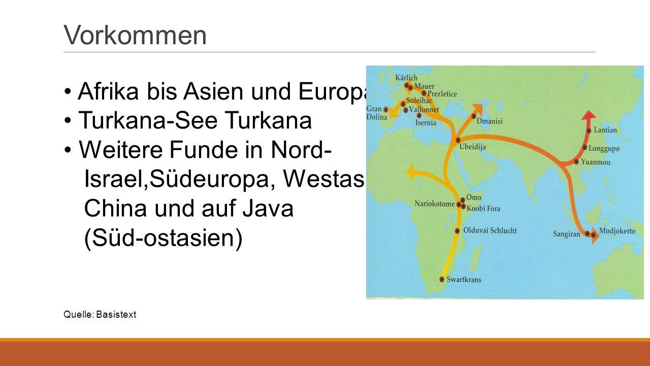 Vorkommen Afrika bis Asien und Europa Turkana-See Turkana