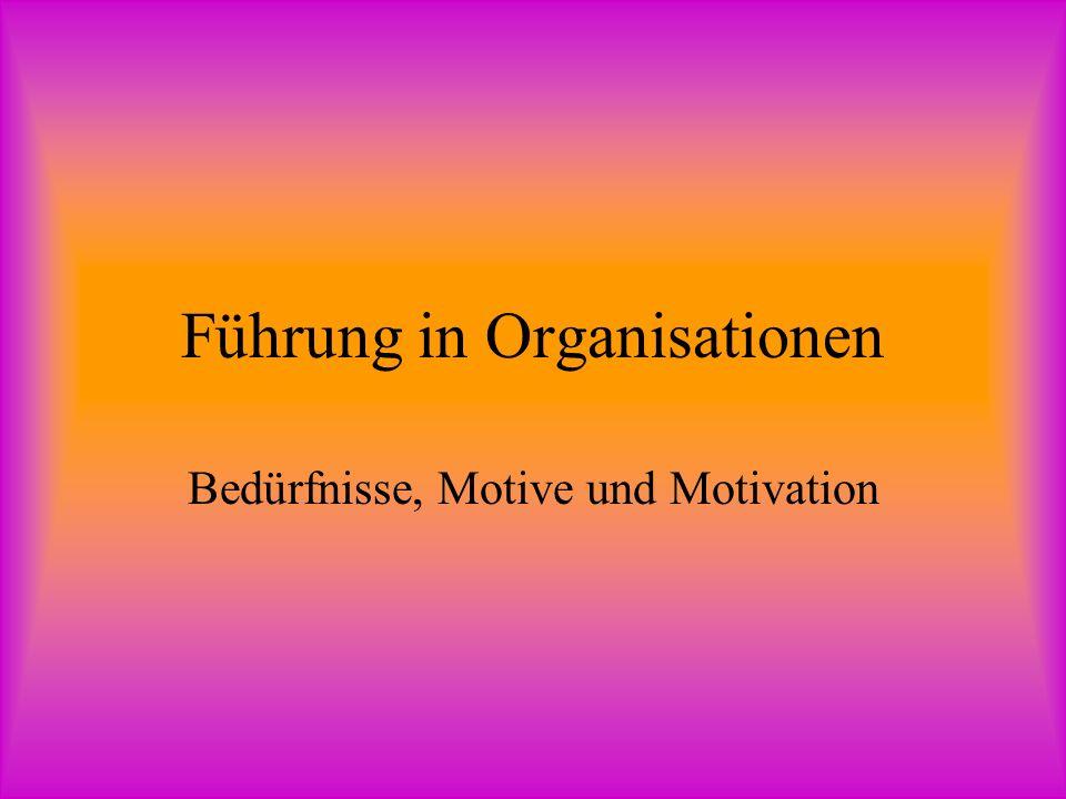 Führung in Organisationen