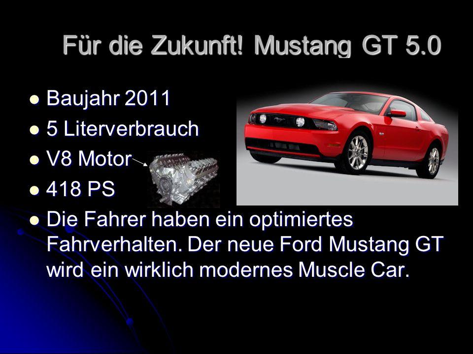 Für die Zukunft! Mustang GT 5.0