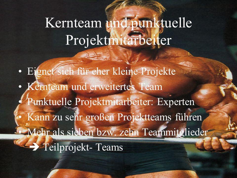 Kernteam und punktuelle Projektmitarbeiter