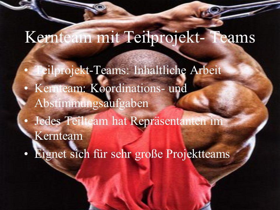 Kernteam mit Teilprojekt- Teams