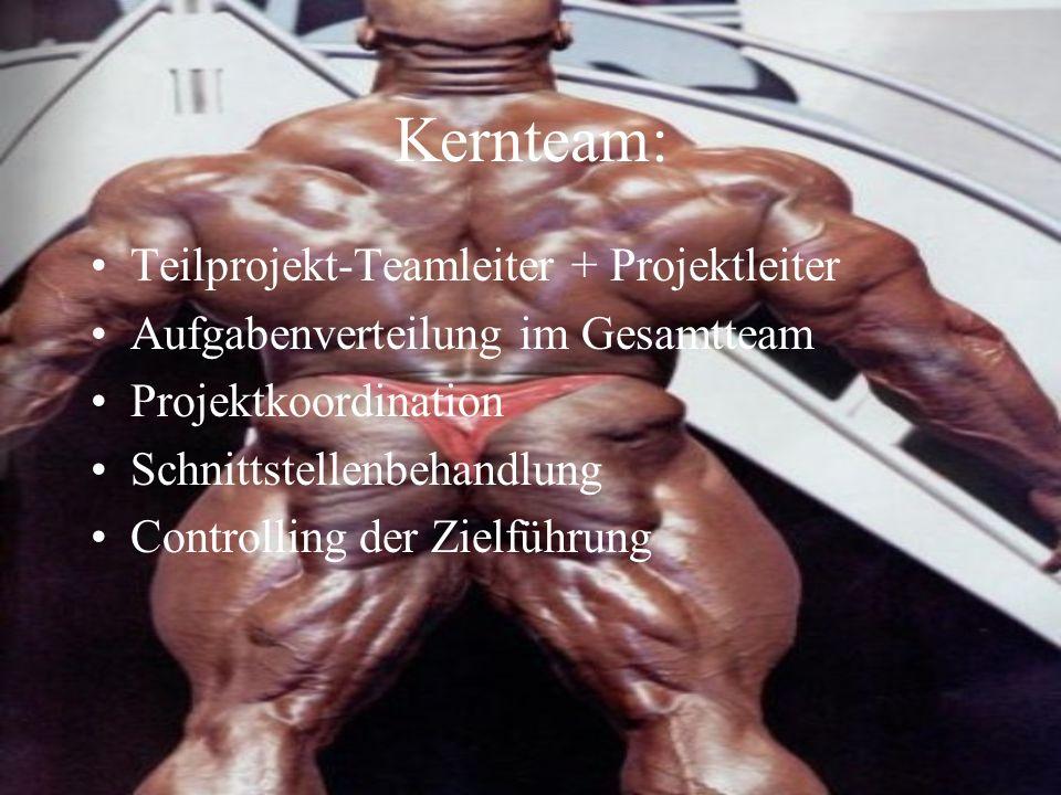 Kernteam: Teilprojekt-Teamleiter + Projektleiter