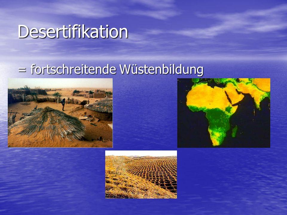 Desertifikation = fortschreitende Wüstenbildung
