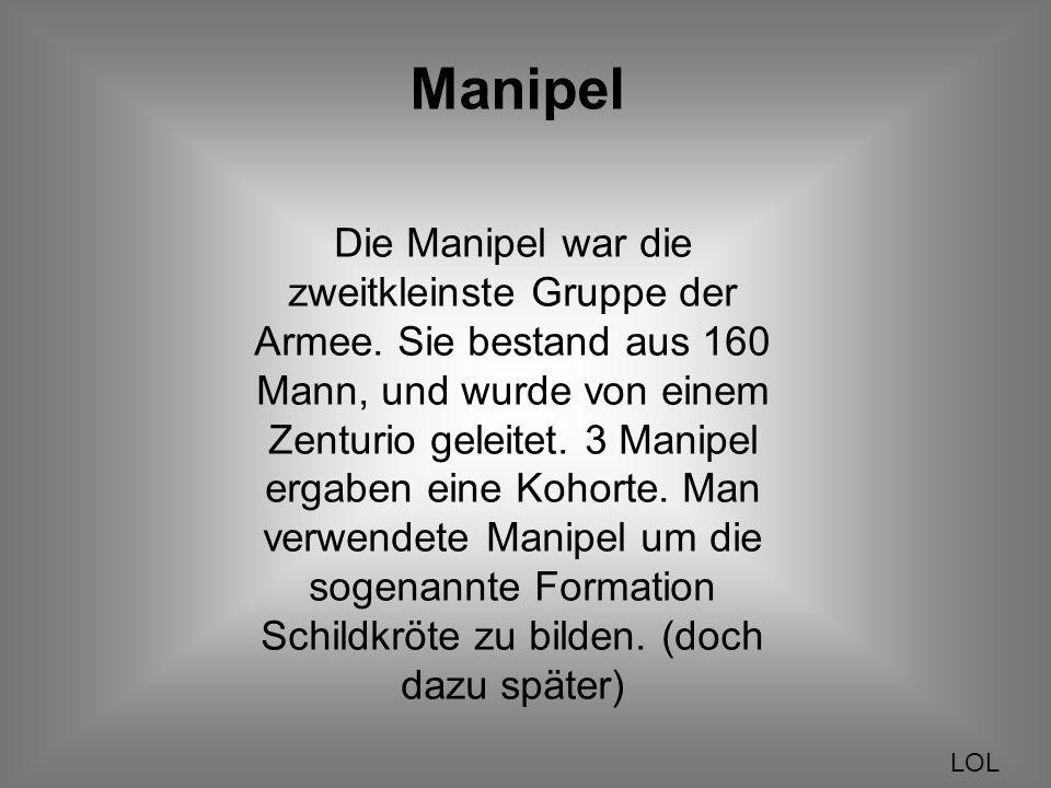 Manipel
