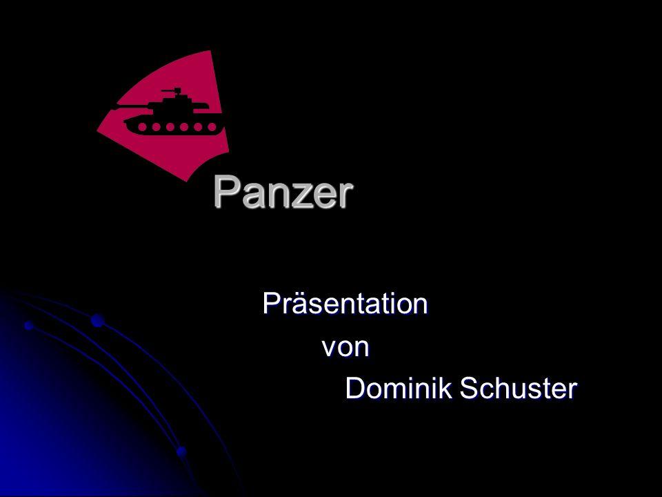Präsentation von Dominik Schuster