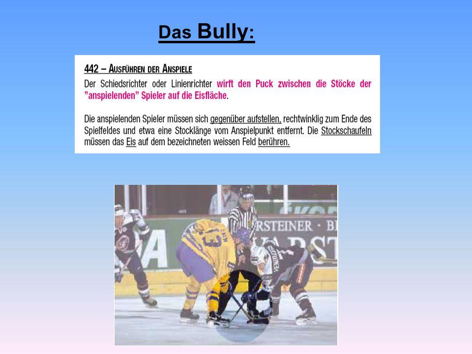 Das Bully: