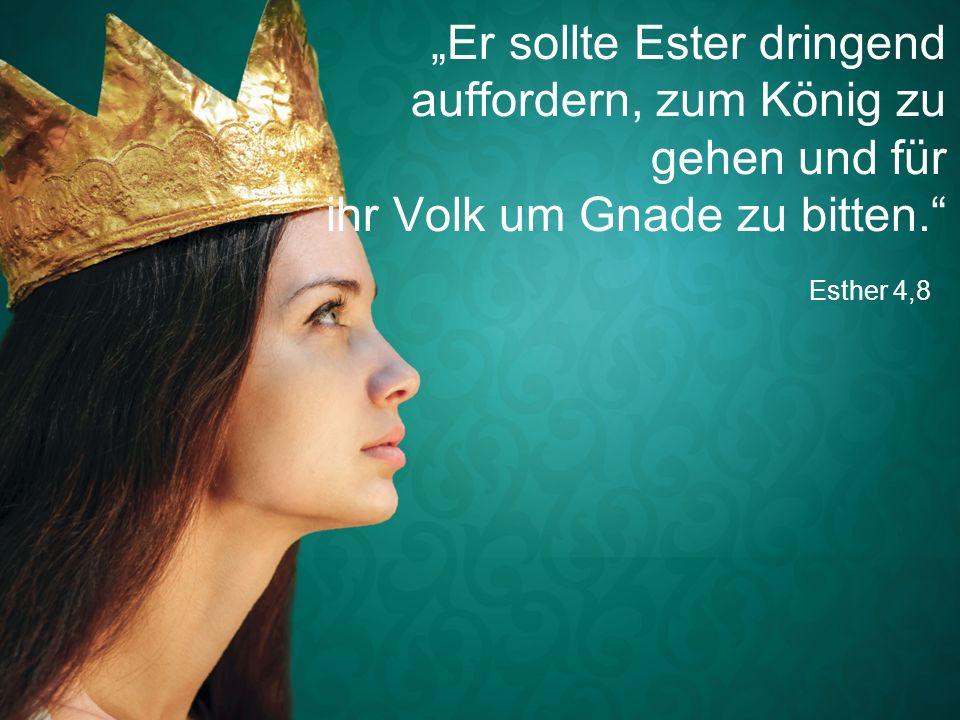 """""""Er sollte Ester dringend auffordern, zum König zu gehen und für ihr Volk um Gnade zu bitten."""