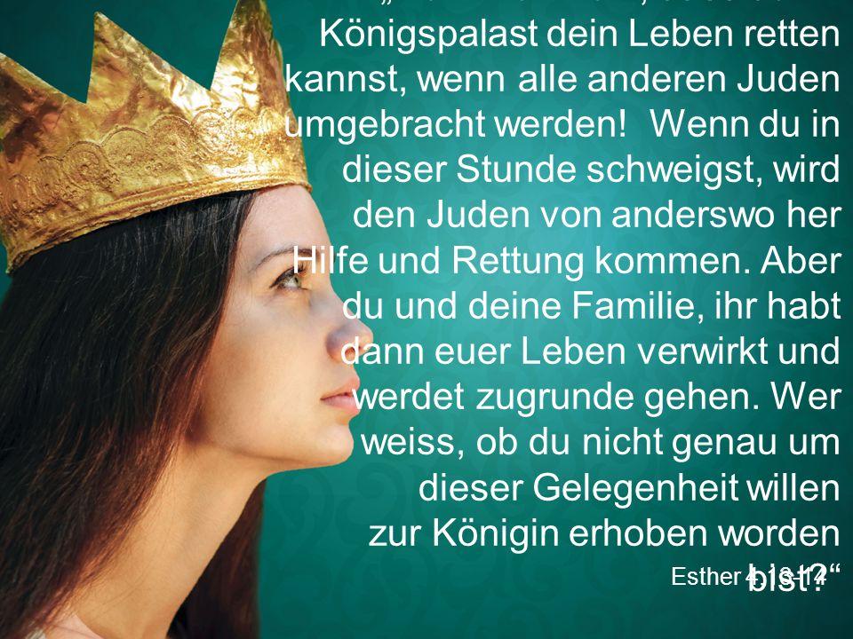 """""""Denk nur nicht, dass du im Königspalast dein Leben retten kannst, wenn alle anderen Juden umgebracht werden! Wenn du in dieser Stunde schweigst, wird den Juden von anderswo her Hilfe und Rettung kommen. Aber du und deine Familie, ihr habt dann euer Leben verwirkt und werdet zugrunde gehen. Wer weiss, ob du nicht genau um dieser Gelegenheit willen zur Königin erhoben worden bist"""