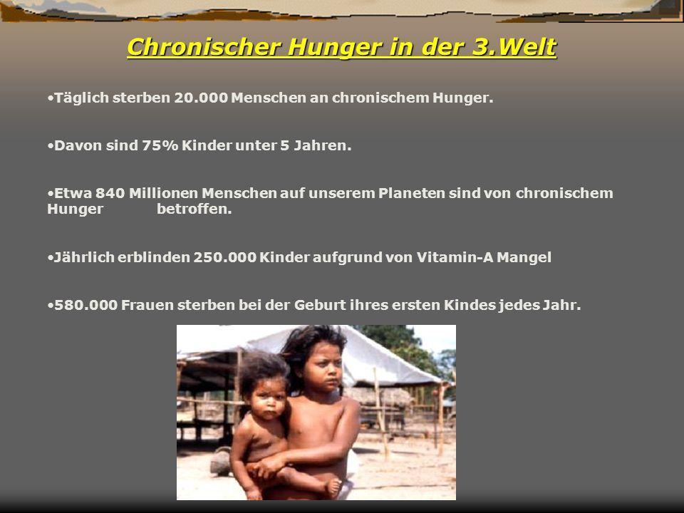 Chronischer Hunger in der 3.Welt