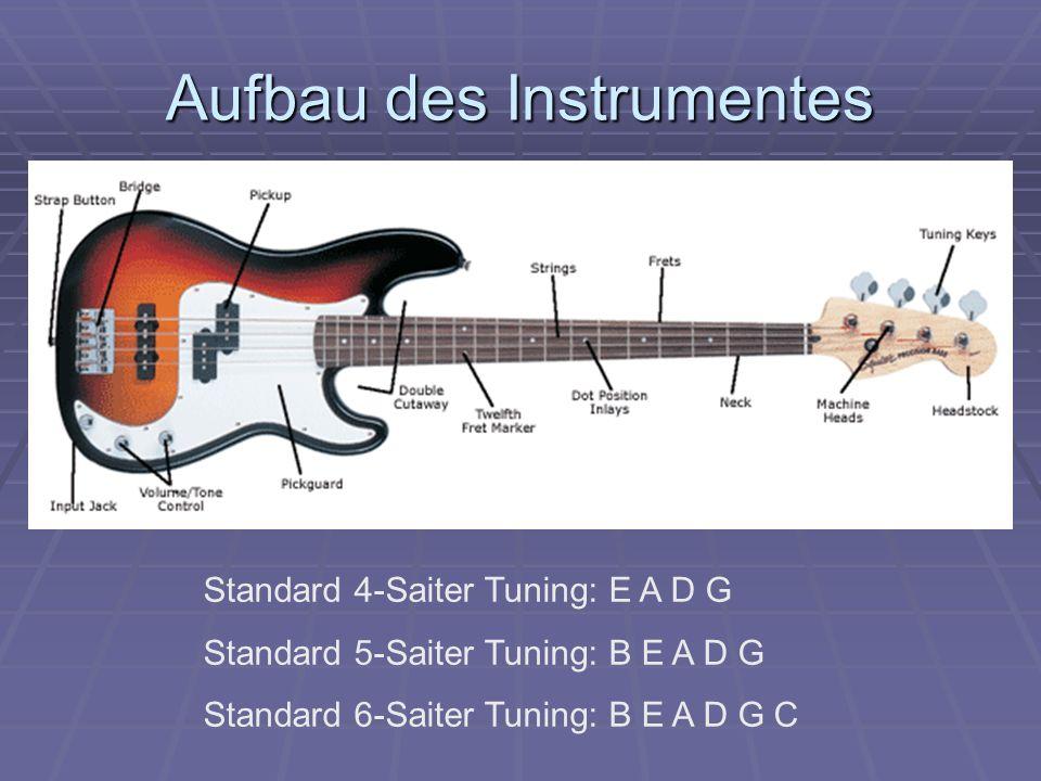 Aufbau des Instrumentes