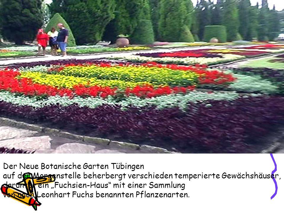 Der Neue Botanische Garten Tübingen