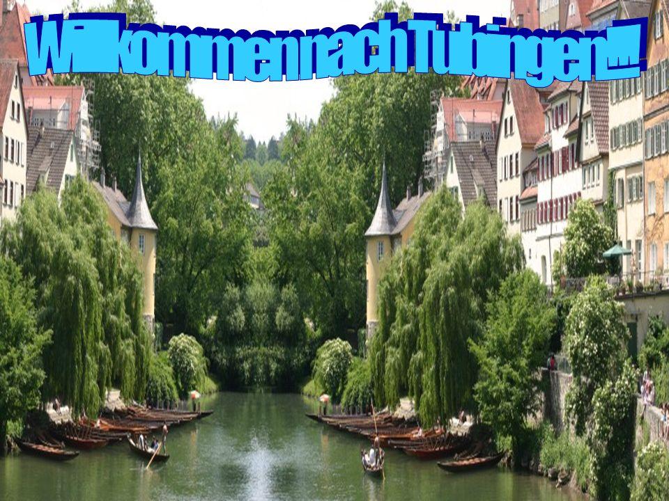 Willkommen nach Tubingen!!!