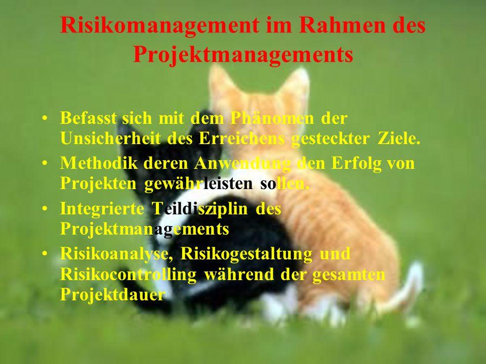 Risikomanagement im Rahmen des Projektmanagements
