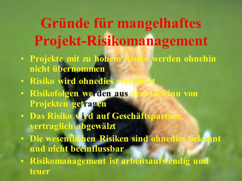 Gründe für mangelhaftes Projekt-Risikomanagement
