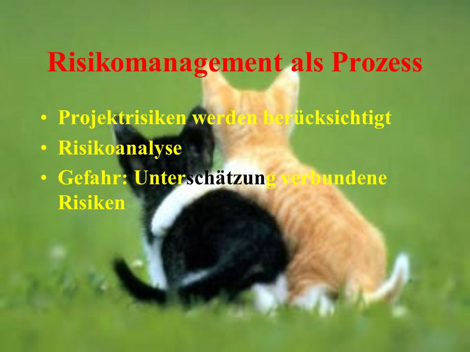 Risikomanagement als Prozess