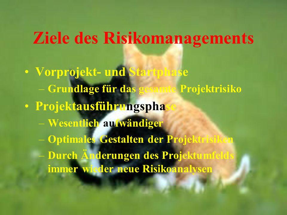 Ziele des Risikomanagements