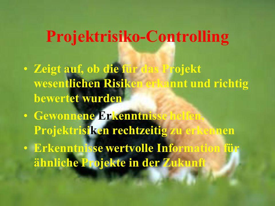 Projektrisiko-Controlling