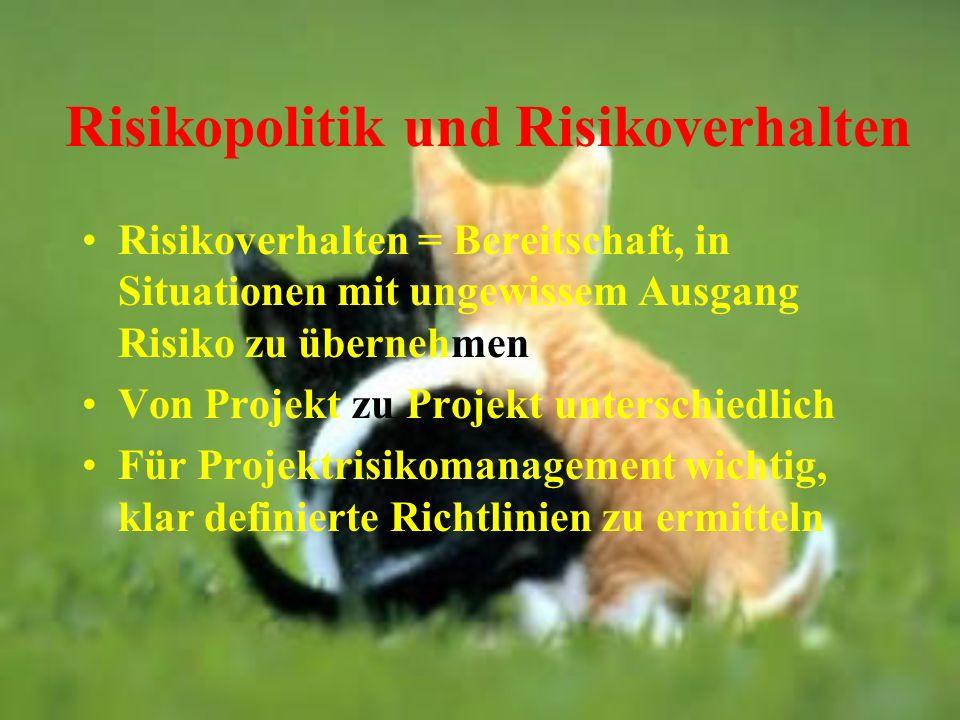 Risikopolitik und Risikoverhalten