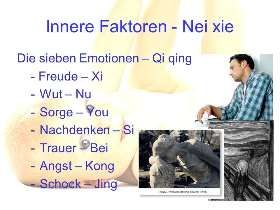 Innere Faktoren - Nei xie