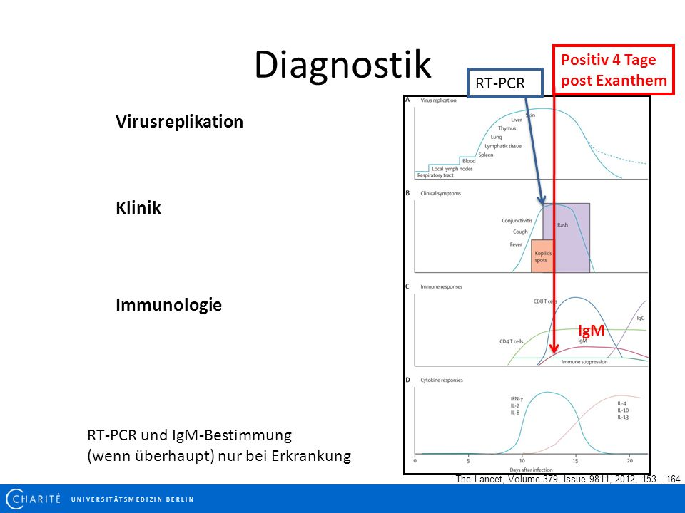 Diagnostik Virusreplikation Klinik Immunologie