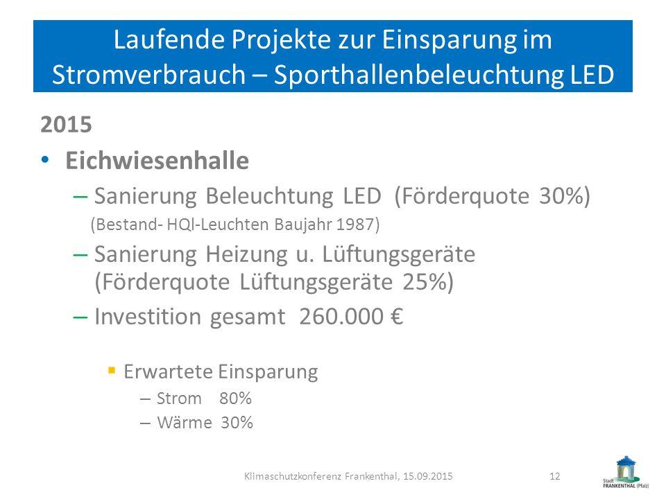 Klimaschutzkonferenz Frankenthal, 15.09.2015