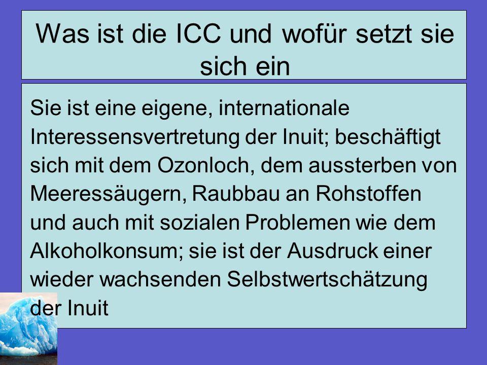 Was ist die ICC und wofür setzt sie sich ein