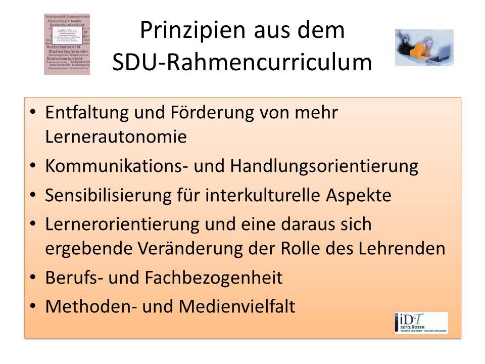 Prinzipien aus dem SDU-Rahmencurriculum