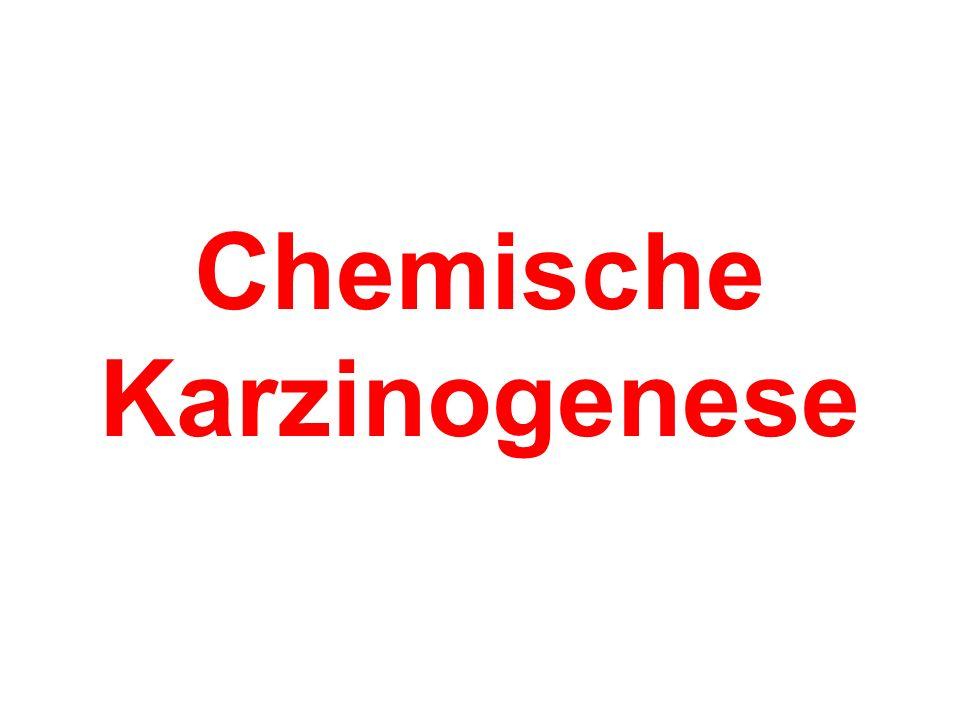 Chemische Karzinogenese