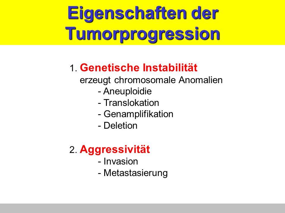 Eigenschaften der Tumorprogression