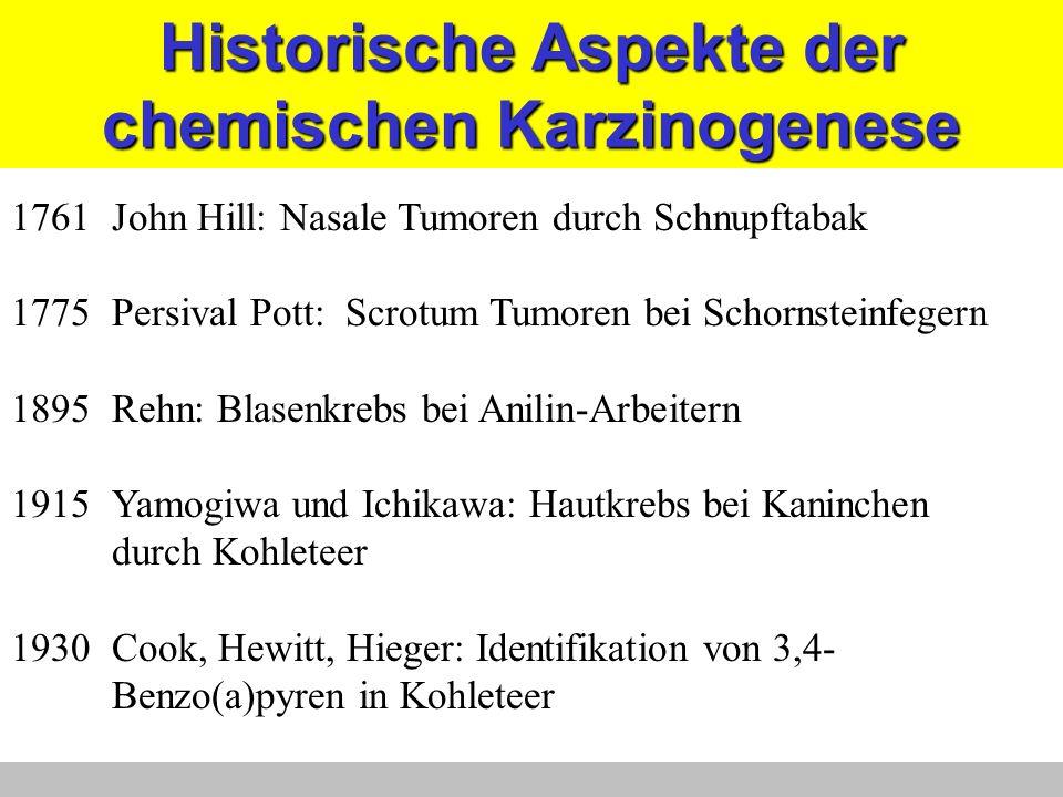 Historische Aspekte der chemischen Karzinogenese