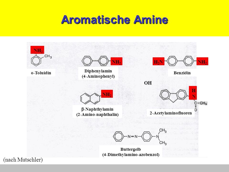 (4-Dimethylamino-azobenzol)
