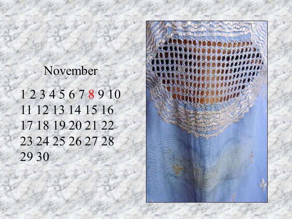 November 1 2 3 4 5 6 7 8 9 10 11 12 13 14 15 16 17 18 19 20 21 22 23 24 25 26 27 28 29 30 RT 13