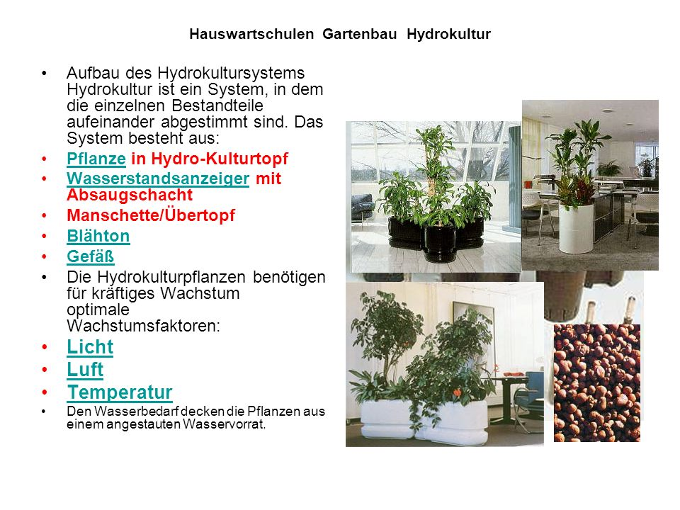 hauswartschulen gartenbau hydrokultur ppt video online herunterladen. Black Bedroom Furniture Sets. Home Design Ideas