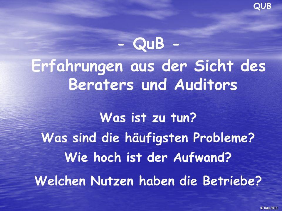 - QuB - Erfahrungen aus der Sicht des Beraters und Auditors