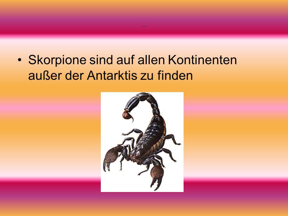 Verbreitung der Skorpione