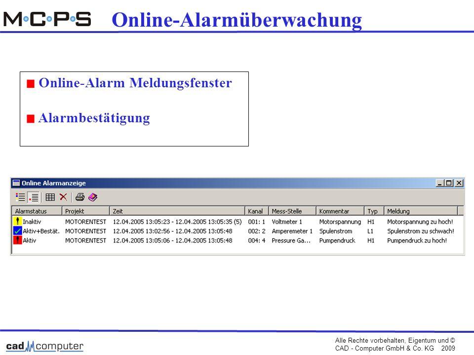 Online-Alarmüberwachung