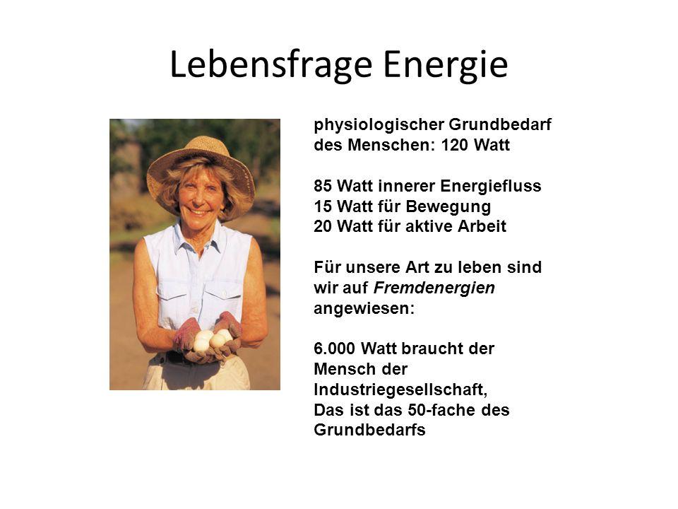 Lebensfrage Energie physiologischer Grundbedarf des Menschen: 120 Watt