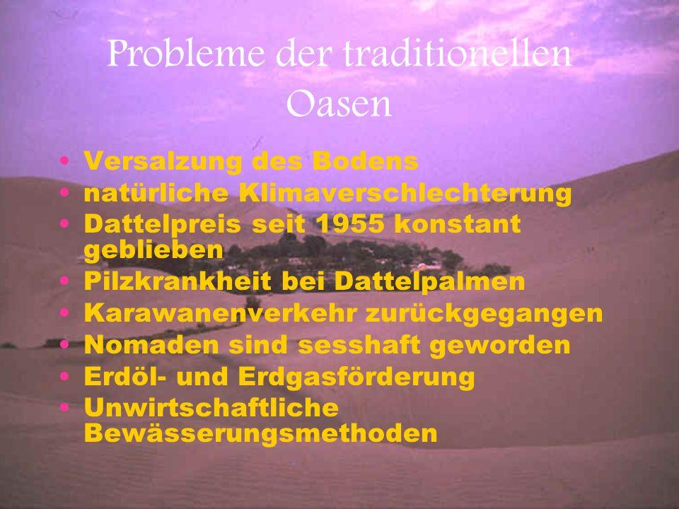 Probleme der traditionellen Oasen