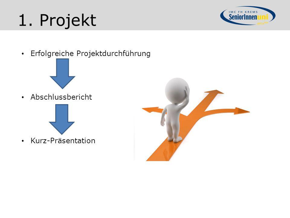 1. Projekt Erfolgreiche Projektdurchführung Abschlussbericht