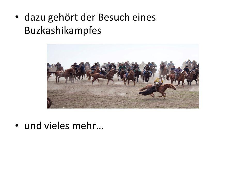 dazu gehört der Besuch eines Buzkashikampfes
