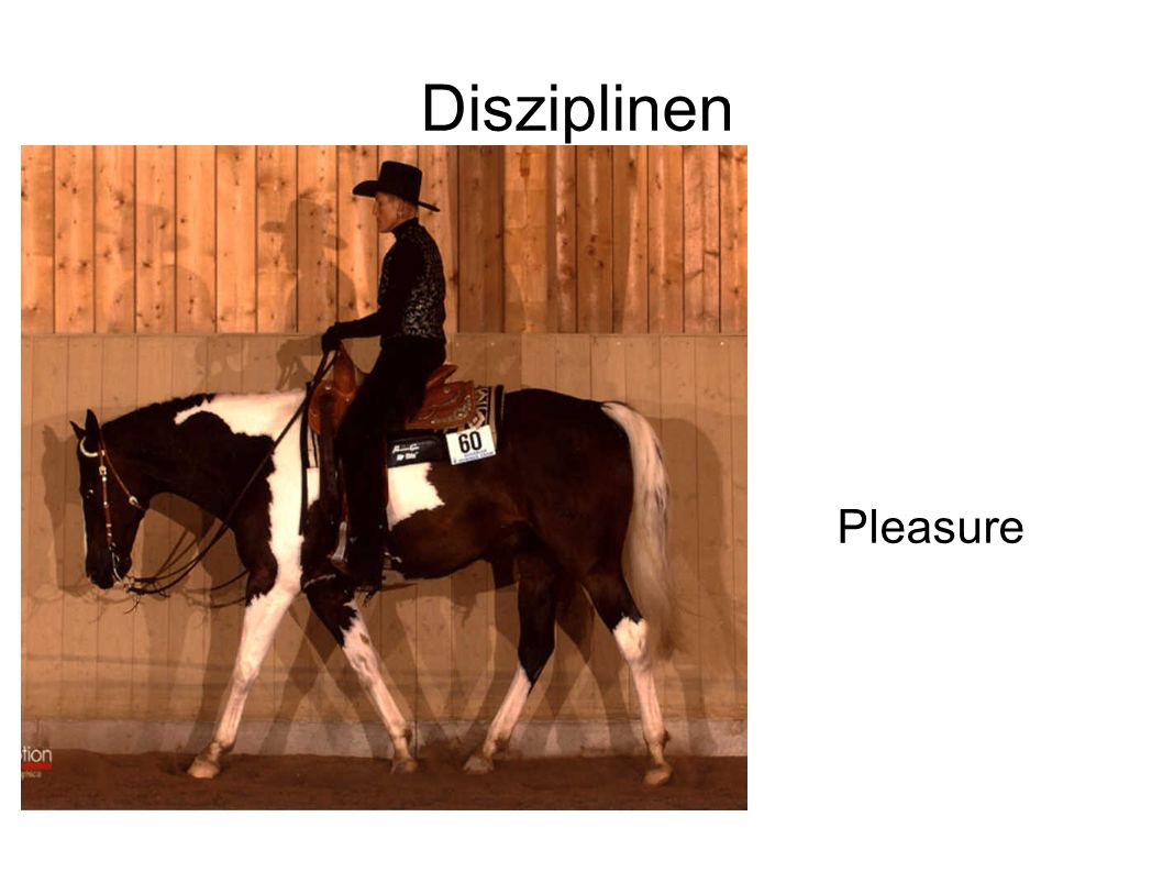 Disziplinen Pleasure