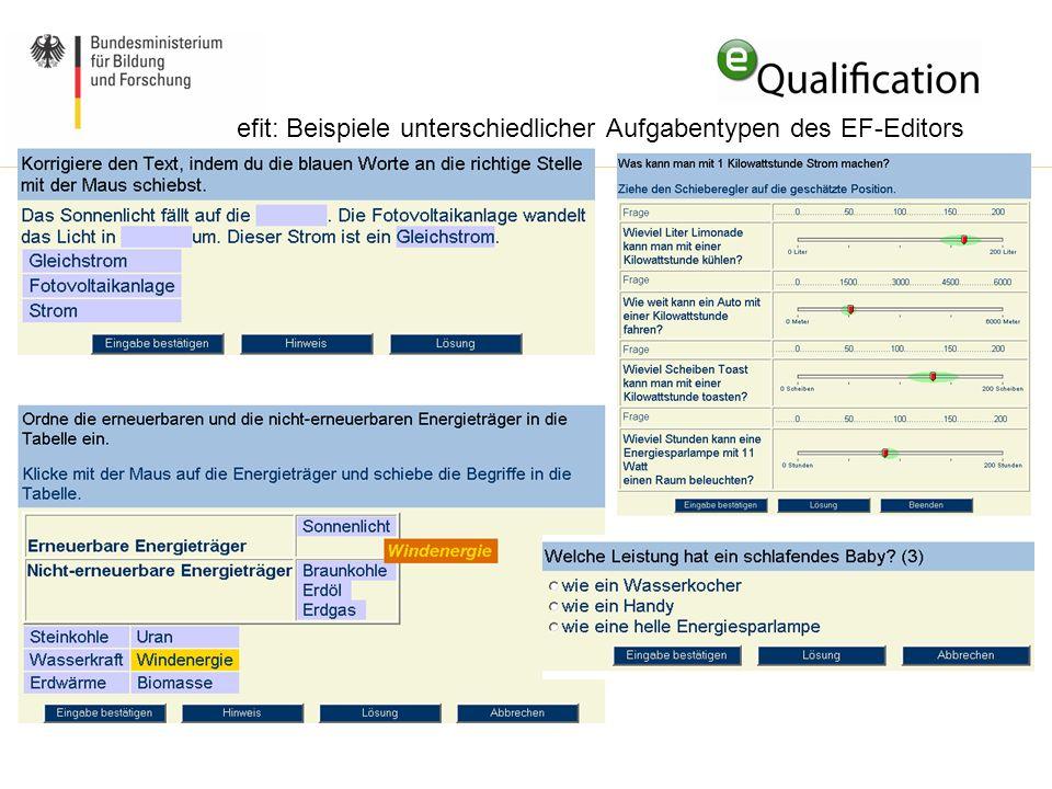 efit: Beispiele unterschiedlicher Aufgabentypen des EF-Editors