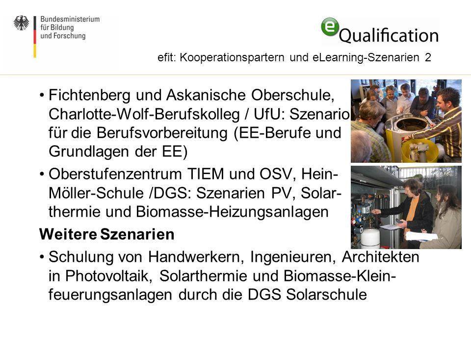 efit: Kooperationspartern und eLearning-Szenarien 2