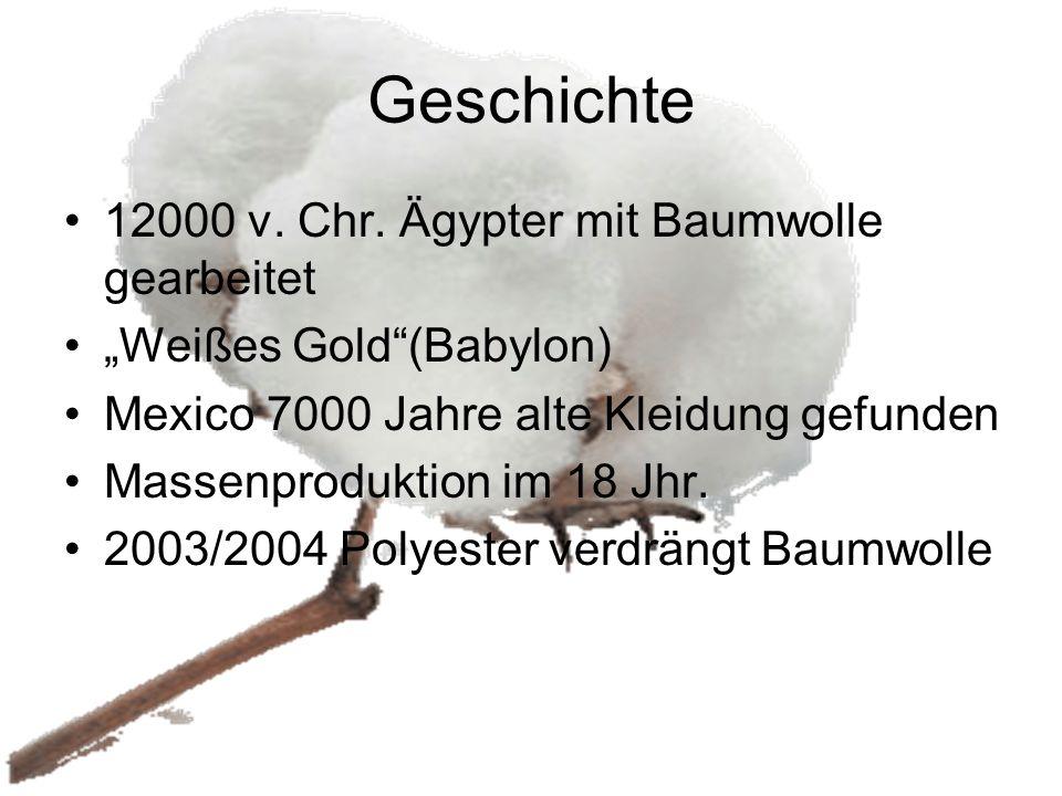 Geschichte 12000 v. Chr. Ägypter mit Baumwolle gearbeitet