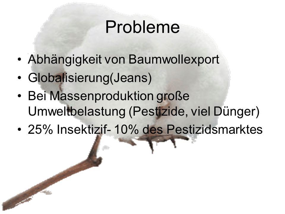 Probleme Abhängigkeit von Baumwollexport Globalisierung(Jeans)