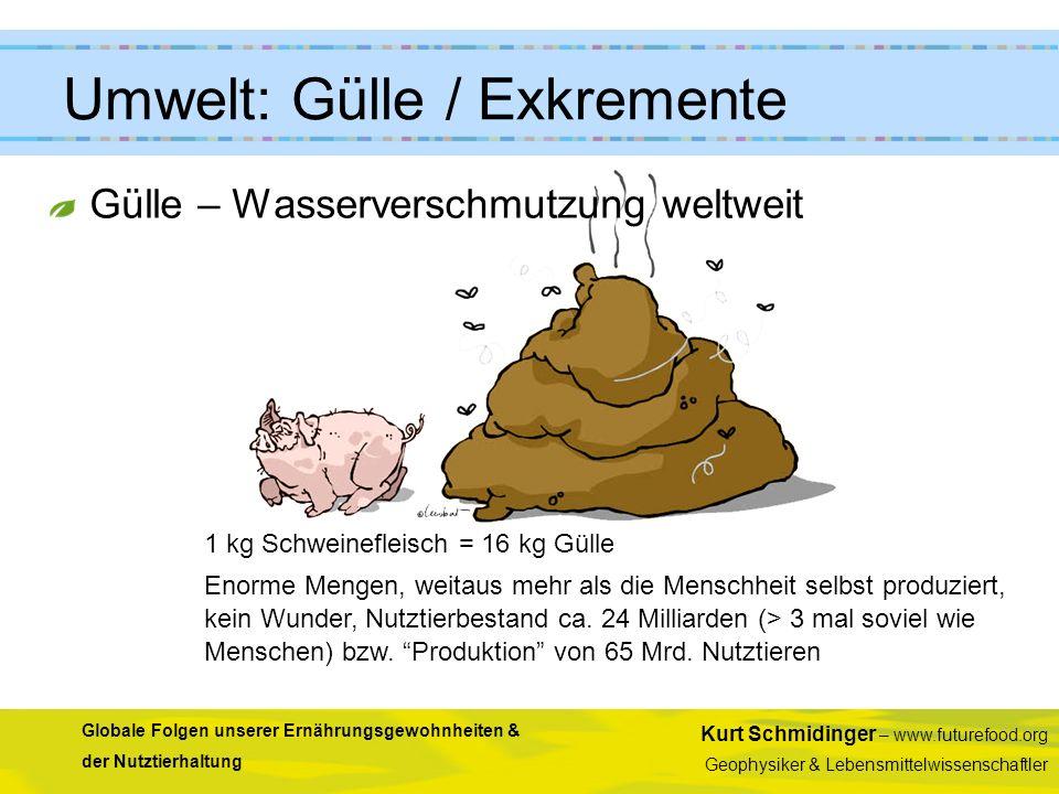 Umwelt: Gülle / Exkremente
